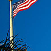 American Flag Flying Over The Palms Art Print