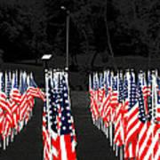 American Flags Art Print