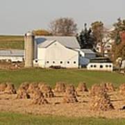 Amish Countryside Art Print