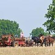 Amish Manure Spreader Art Print