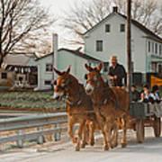 Amish Wagon Art Print by Heidi Reyher
