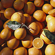 An Abundance Of Oranges Art Print