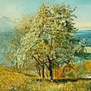 An Alpine Lake Art Print