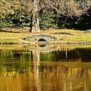 An Autumn Bridge Art Print