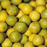 An Enticing Display Of Lemons Art Print by Jason Edwards