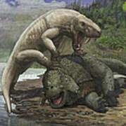 An Inostrancevia Attacks A Scutosaurus Art Print