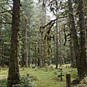 An Old Cemetary In A Forest Art Print by Taylor S. Kennedy
