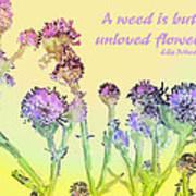 An Unloved Flower Art Print