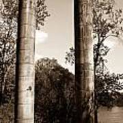 Ancient Columns By The River Art Print