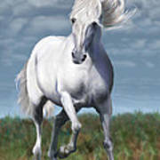 Andalusian Freedom Art Print by Suni Roveto