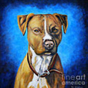 American Staffordshire Terrier Dog Painting Art Print