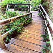 Angular Wooden Stairs Art Print