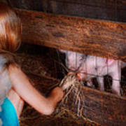 Animal - Pig - Feeding Piglets  Art Print