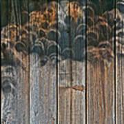 Annular Solar Eclipse - 05-20-2012 Art Print