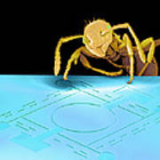 Ant On Pressure Sensor, Sem Art Print