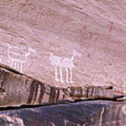 Antelope House Petroglyphs Art Print