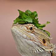 Anyone Seen My Salad? Art Print
