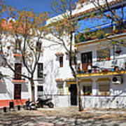 Apartment Houses In Marbella Art Print