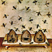 Apiculture-beekeeping-14th Century Art Print by Science Source