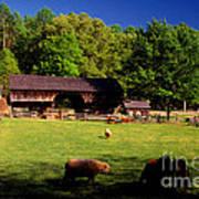 Appalachian Barn Yard Art Print