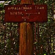 Appalachian Trail Art Print by Sarah Buechler