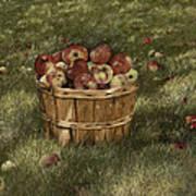 Apples In Basket Art Print
