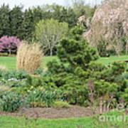 April Garden Art Print