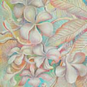 Apsara Flower  Art Print