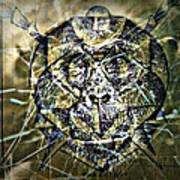 Arachnids Art Print by Paulo Zerbato
