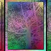 Arboreal Mist Trilogy Art Print