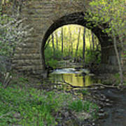 Arch In Spring 3 Art Print