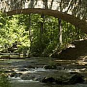 Arched Bridge Art Print