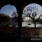 Archs And Trees Art Print