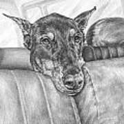 Are We There Yet - Doberman Pinscher Dog Print Art Print