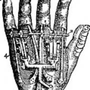 Artificial Hand Designed By Ambroise Art Print