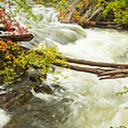 As The River Flows Art Print