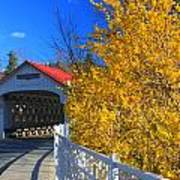 Ashuelot Covered Bridge And Forsythia Art Print