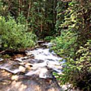 Aspen Stream Art Print