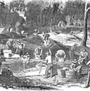 Australian Gold Rush, 1851 Art Print