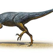 Austroraptor Cabazai, A Prehistoric Era Art Print