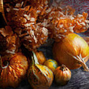 Autumn - Gourd - Still Life With Gourds Art Print by Mike Savad