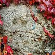 Autumn 6 Art Print by Elena Mussi