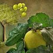 Autumn Apple Art Print