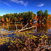 Autumn At Bomoseen Lake  Art Print