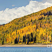 Autumn At Huntington Reservoir - Wasatch Plateau - Utah Art Print