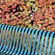 Autumn Blue Bench Art Print