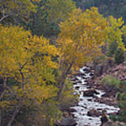 Autumn Canyon Colorado Scenic View Art Print