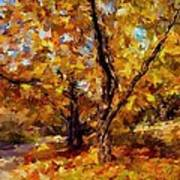 Autumn Colors 3 Art Print