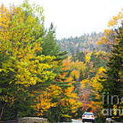Autumn Colors 3990 Art Print