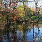 Autumn Colors On The Pond  Art Print